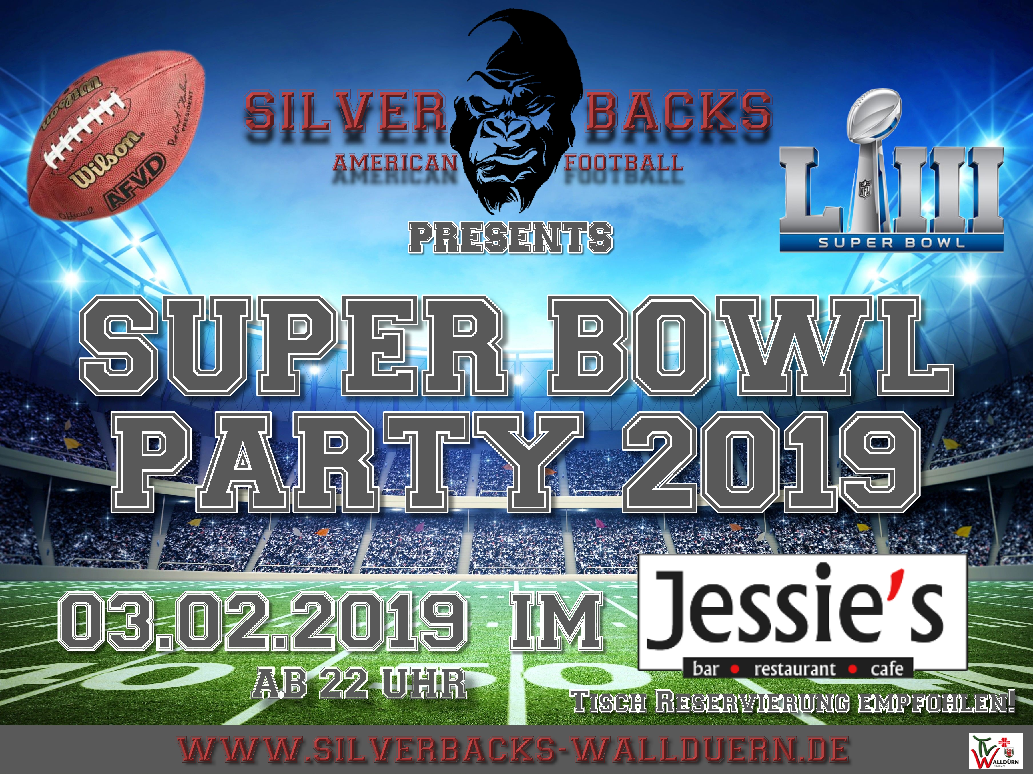 Super Bowl Party 2019